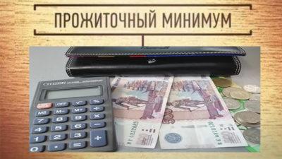 Входит ли подоходный налог в прожиточный минимум?