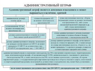 Какой срок оплаты штрафа за административное правонарушение?